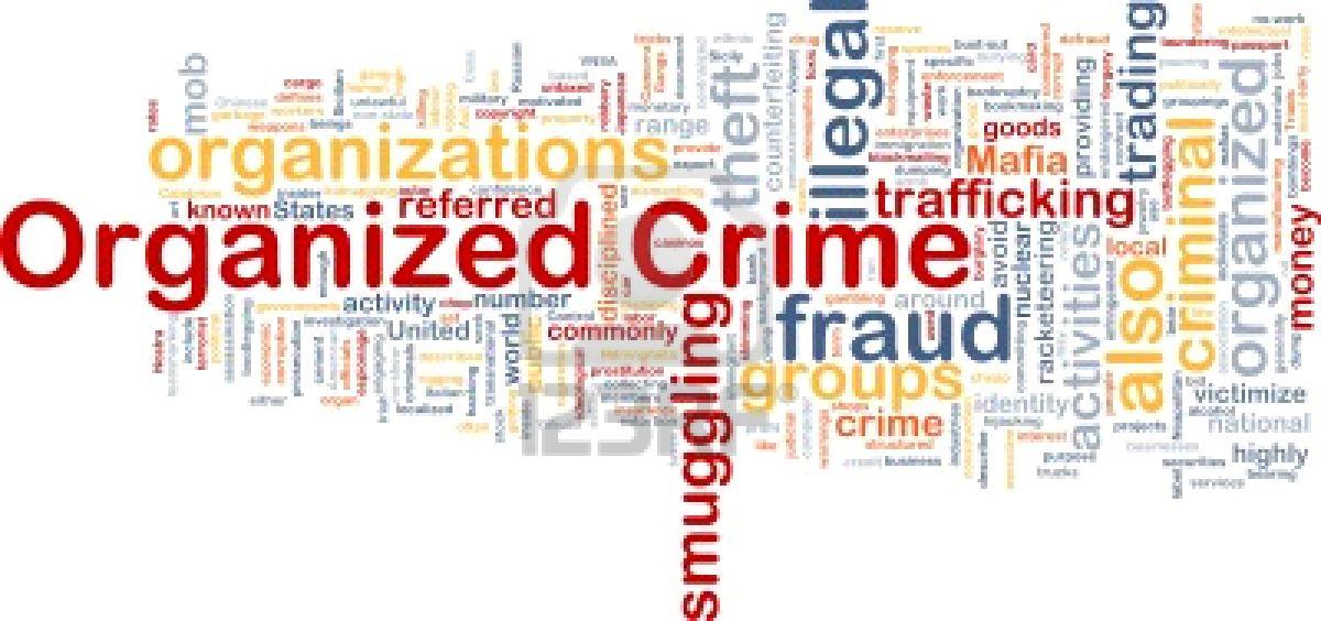 organized crime wthin the unit essay
