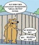 bildigin_ayi1