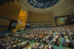 Birleşmiş Milletler Genel Kurulu - UN Photo/Amanda Voisard