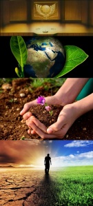 un_soil_year